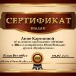 сертификат профессионал