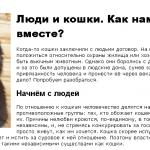 Статья об отношениях людей и кошек